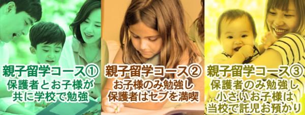 oyako_3types