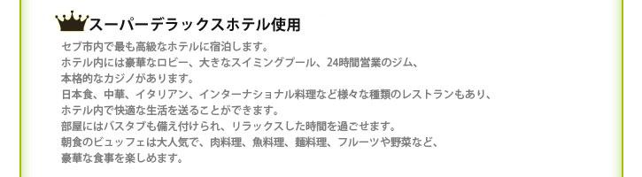 スーパデラックスホテル使用(日本の感覚で言うと1泊数万円はするレベルのホテルです。)
